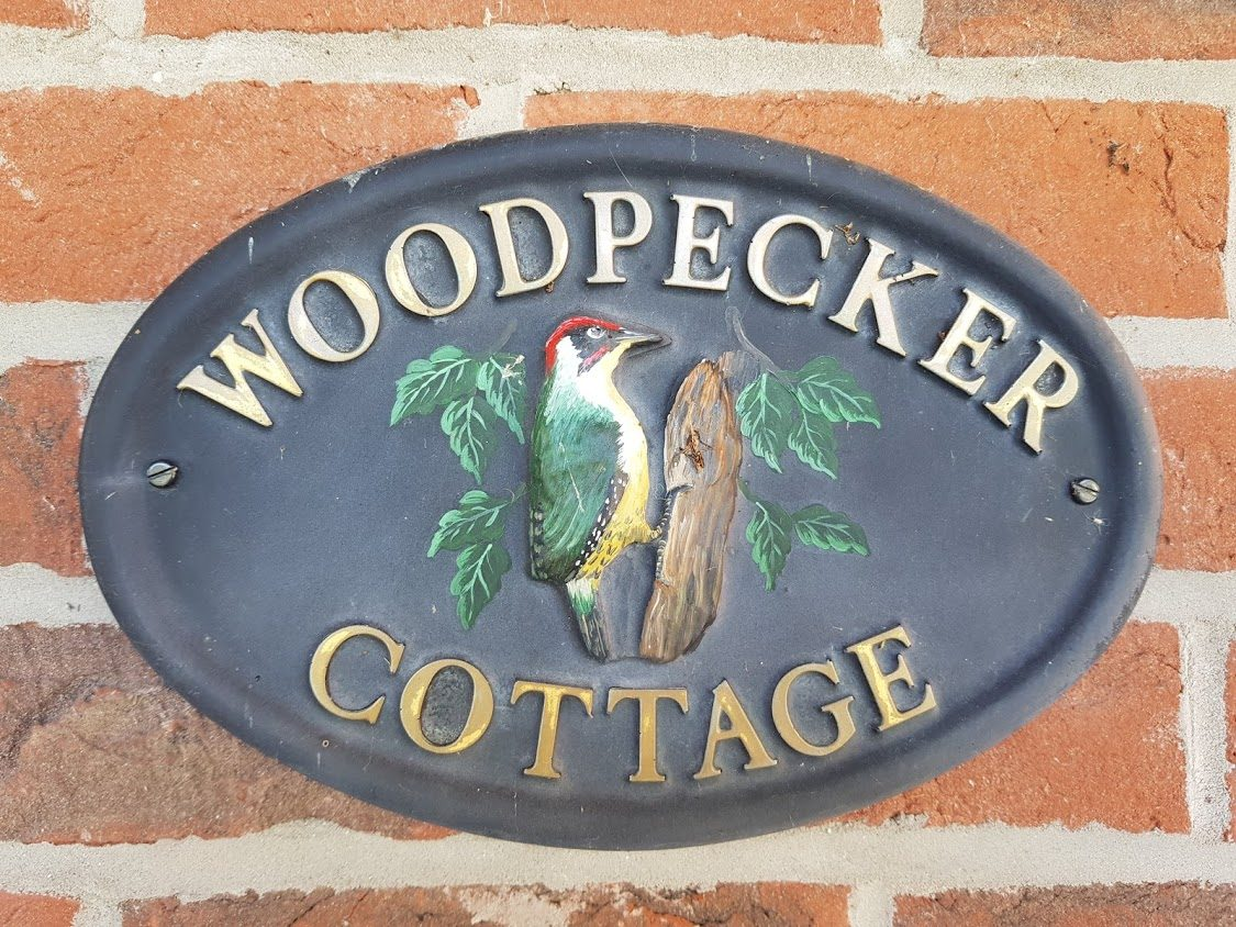 woodepecker
